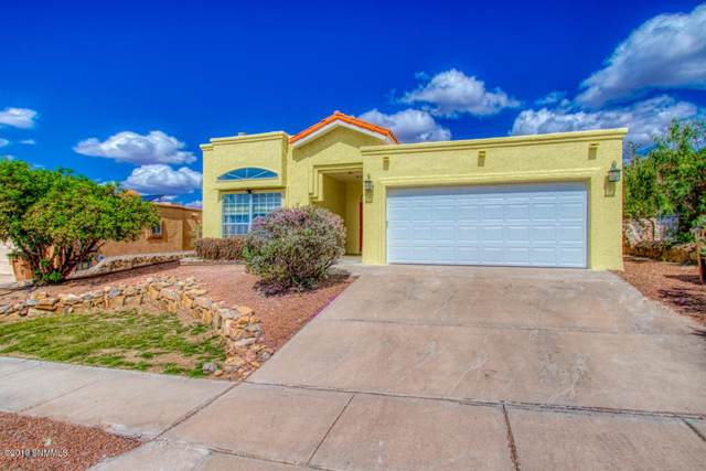 733 Indian Hollow Road, Las Cruces, NM 88011 (MLS #1902831) :: Steinborn & Associates Real Estate