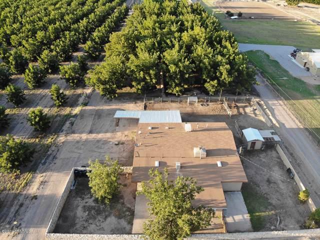 696 Sayles Road, La Mesa, NM 88044 (MLS #1902835) :: Steinborn & Associates Real Estate