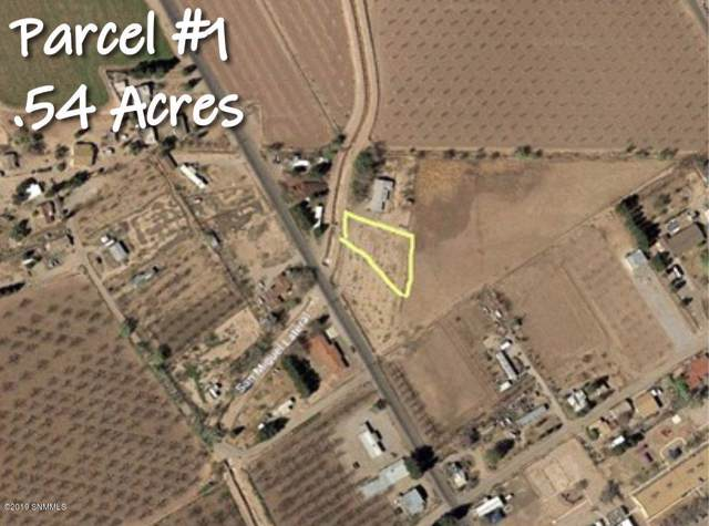 0000 Evaro Drive, La Mesa, NM 88044 (MLS #1902865) :: Steinborn & Associates Real Estate