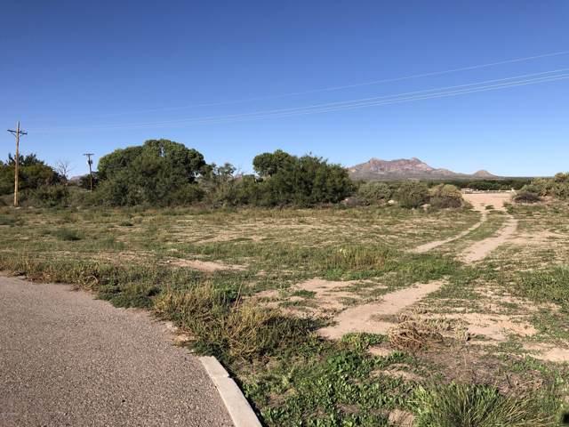 7399 La Fleche Place, Las Cruces, NM 88007 (MLS #1902942) :: Steinborn & Associates Real Estate
