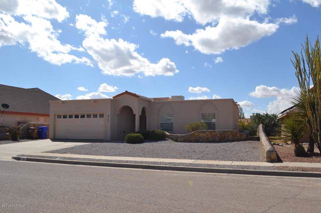 4761 Hilda Drive, Las Cruces, NM 88007 (MLS #1903033) :: Steinborn & Associates Real Estate