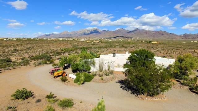5550 Alamo Mine Trail, Las Cruces, NM 88011 (MLS #1903036) :: Steinborn & Associates Real Estate
