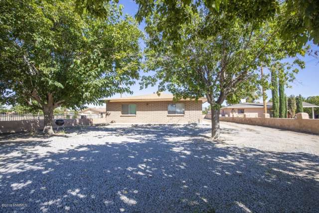 8845 S Main Street, Mesilla Park, NM 88047 (MLS #1903061) :: Better Homes and Gardens Real Estate - Steinborn & Associates