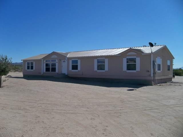 8015 Primos Court, Mesilla Park, NM 88047 (MLS #1903064) :: Steinborn & Associates Real Estate