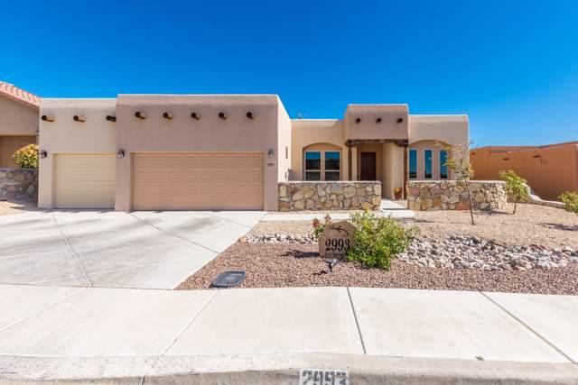 2993 E East Springs Road, Las Cruces, NM 88011 (MLS #1903085) :: Steinborn & Associates Real Estate