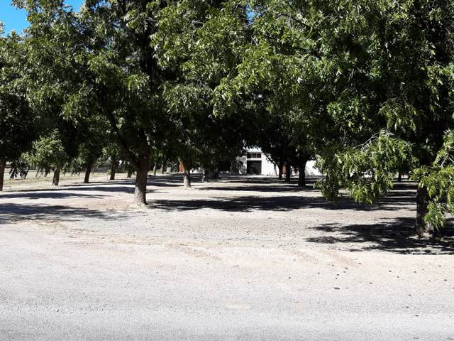2022 Westwind Road, Las Cruces, NM 88007 (MLS #1903110) :: Steinborn & Associates Real Estate