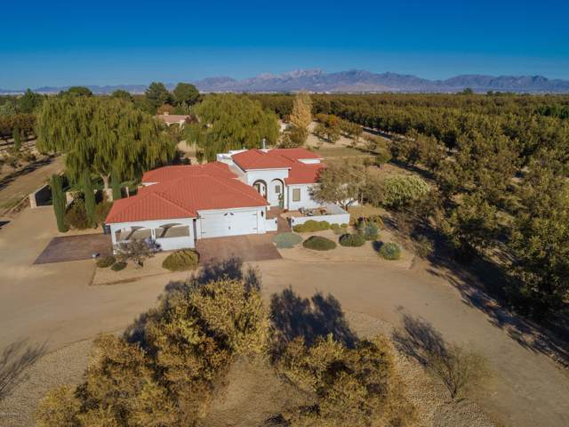 2000 Happy Valley Lane, Mesilla, NM 88046 (MLS #1903175) :: Steinborn & Associates Real Estate
