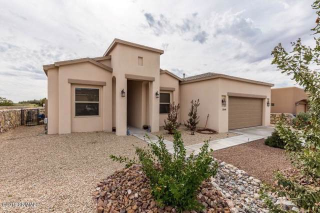 3848 Ringneck Drive, Las Cruces, NM 88001 (MLS #1903204) :: Steinborn & Associates Real Estate
