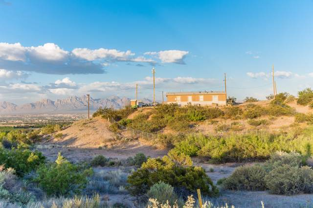 6200 Dusty Prints Road, Las Cruces, NM 88007 (MLS #1903218) :: Agave Real Estate Group