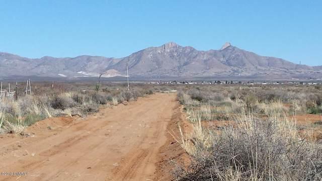 000 Barksdale Loop, Las Cruces, NM 88012 (MLS #1903229) :: Steinborn & Associates Real Estate