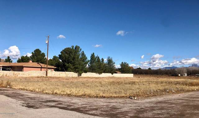000 Lilly Pad Lane, Mesilla Park, NM 88047 (MLS #1903318) :: Better Homes and Gardens Real Estate - Steinborn & Associates