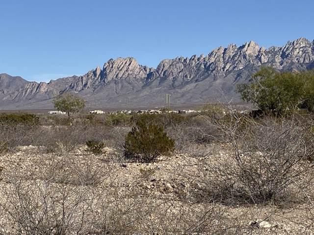 7829 Waterfall Canyon Lane, Las Cruces, NM 88011 (MLS #1903388) :: Arising Group Real Estate Associates