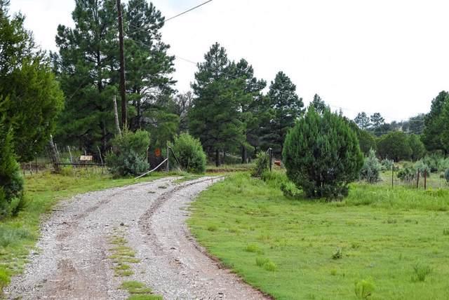 1592 Highway 24, PINON, NM 88344 (MLS #1903440) :: Steinborn & Associates Real Estate
