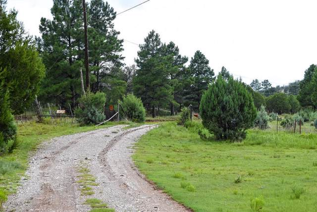 1592 Highway 24, PINON, NM 88344 (MLS #1903441) :: Steinborn & Associates Real Estate