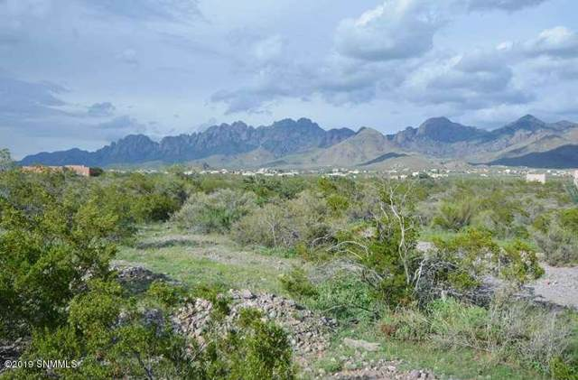 0000 Hardrock Road, Las Cruces, NM 88011 (MLS #1903520) :: Steinborn & Associates Real Estate