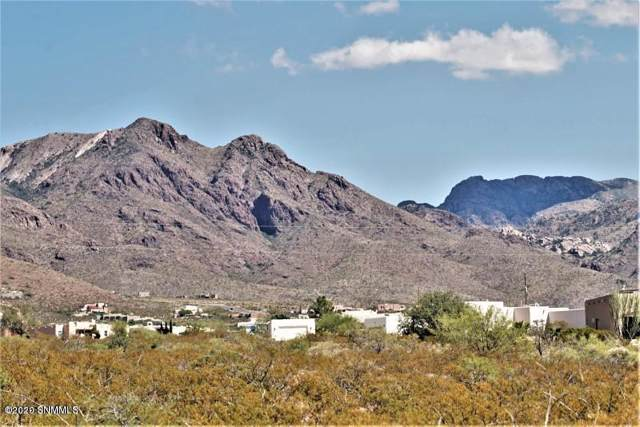 Lot 20 Cueva Mine Trail, Las Cruces, NM 88011 (MLS #2000003) :: Steinborn & Associates Real Estate