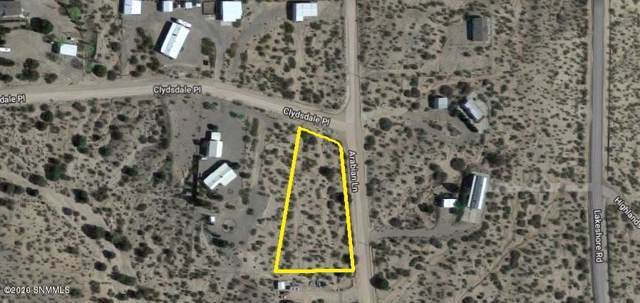 100 Clydesdale Road, Elephant Butte, NM 87935 (MLS #2000008) :: Better Homes and Gardens Real Estate - Steinborn & Associates