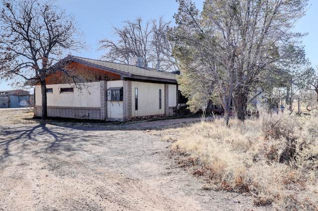 437 E Lisa Drive, Chaparral, NM 88081 (MLS #2000057) :: Steinborn & Associates Real Estate