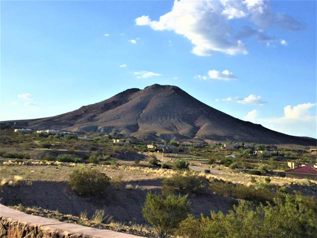 0000 Arco De Goya L5, Las Cruces, NM 88007 (MLS #2000078) :: Steinborn & Associates Real Estate