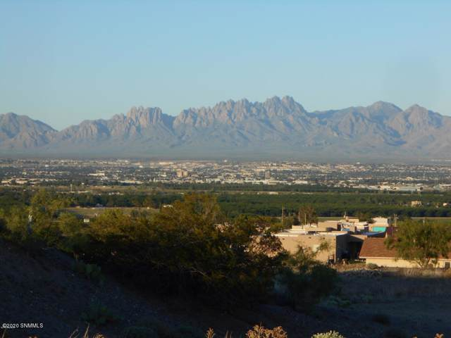 548 Larkspur, Las Cruces, NM 88007 (MLS #2000129) :: Steinborn & Associates Real Estate