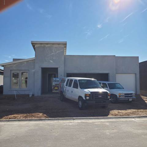 3722 Golden Echo Loop, Las Cruces, NM 88012 (MLS #2000148) :: Steinborn & Associates Real Estate