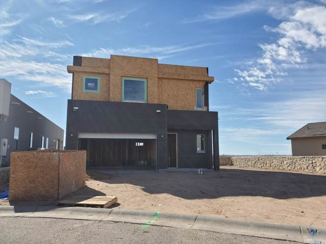 3892 Ringneck Drive, Las Cruces, NM 88001 (MLS #2000154) :: Better Homes and Gardens Real Estate - Steinborn & Associates