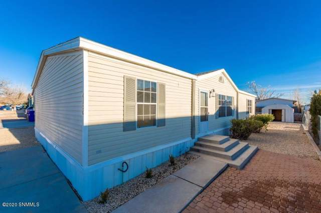 4150 Calle Americana, Las Cruces, NM 88005 (MLS #2000163) :: Steinborn & Associates Real Estate