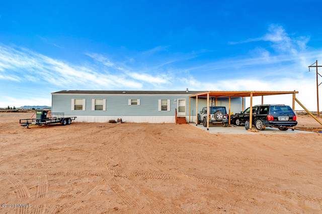 1052 Sunrise Drive, Chaparral, NM 88081 (MLS #2000164) :: Steinborn & Associates Real Estate