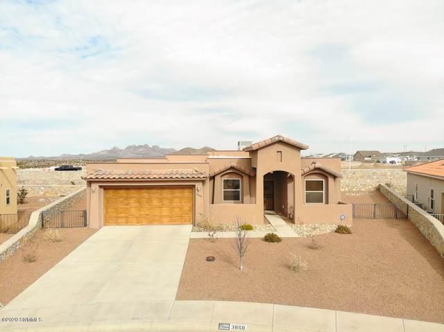 3868 Calle Arriba, Las Cruces, NM 88012 (MLS #2000210) :: Steinborn & Associates Real Estate