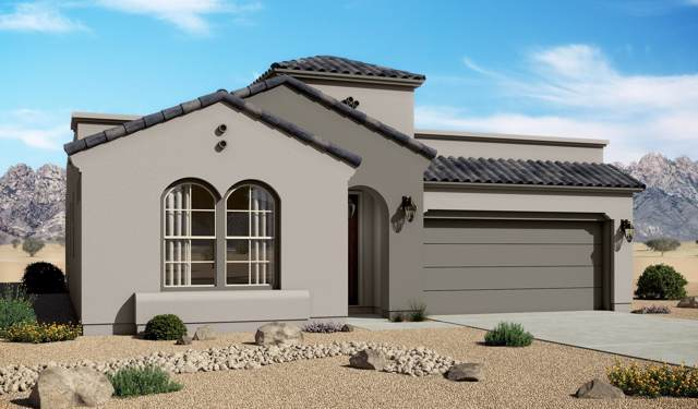 6821 Ojai Avenue, Las Cruces, NM 88012 (MLS #2000211) :: Steinborn & Associates Real Estate