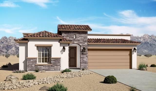 6829 Ojai Avenue, Las Cruces, NM 88012 (MLS #2000219) :: Steinborn & Associates Real Estate