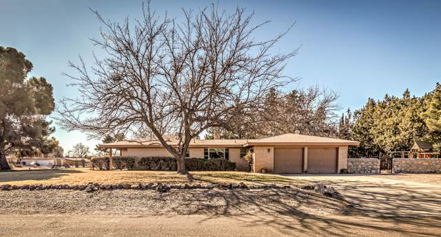 3005 Broadmoor Drive, Las Cruces, NM 88001 (MLS #2000222) :: Steinborn & Associates Real Estate
