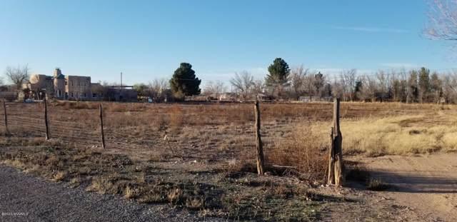 000 Gannet, Anthony, NM 88021 (MLS #2000233) :: Steinborn & Associates Real Estate
