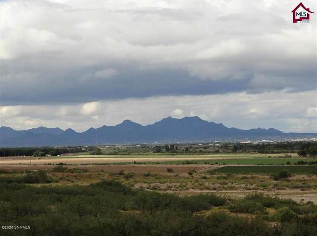 2754 Mesilla Hills Drive Tract 1, Las Cruces, NM 88005 (MLS #2000261) :: Arising Group Real Estate Associates