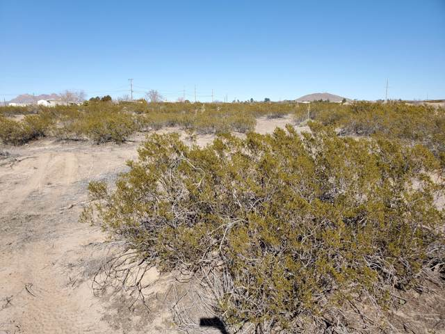 1574 Pelicano Trail, Las Cruces, NM 88012 (MLS #2000277) :: Better Homes and Gardens Real Estate - Steinborn & Associates
