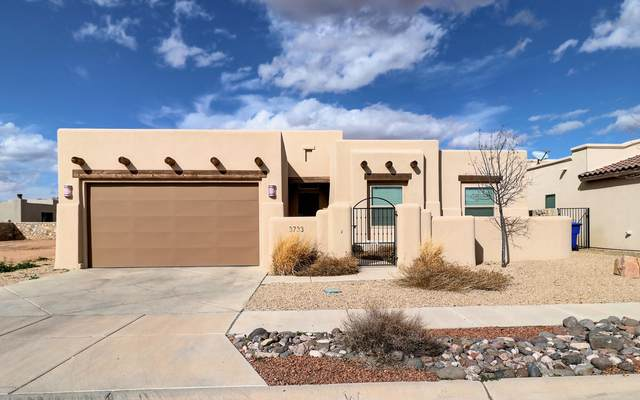 3733 Santa Minerva Avenue, Las Cruces, NM 88012 (MLS #2000389) :: Better Homes and Gardens Real Estate - Steinborn & Associates