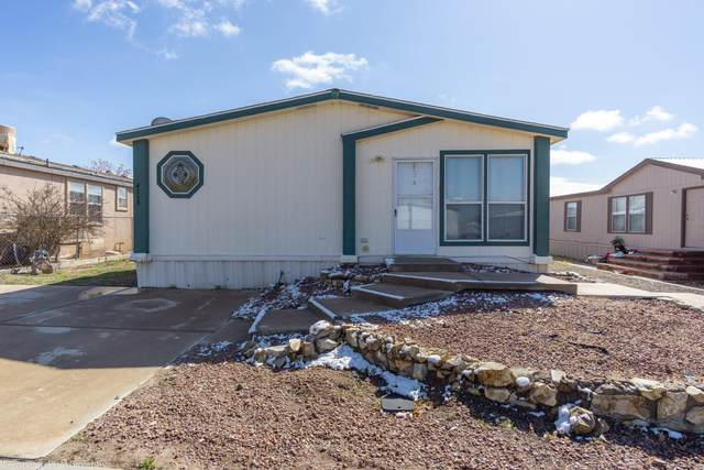 4158 Calle Americana, Las Cruces, NM 88005 (MLS #2000431) :: Agave Real Estate Group