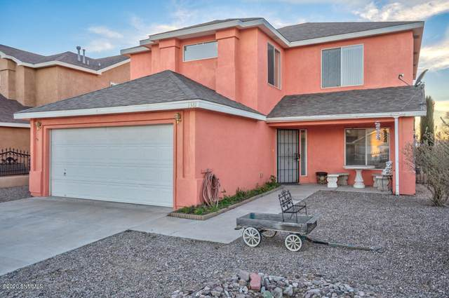 1381 Mogollon Road, Las Cruces, NM 88007 (MLS #2000456) :: Arising Group Real Estate Associates