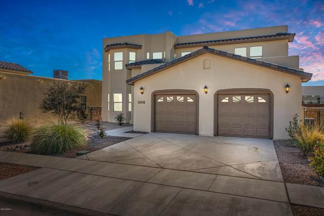 3688 Santa Adriana Avenue, Las Cruces, NM 88012 (MLS #2000483) :: Steinborn & Associates Real Estate