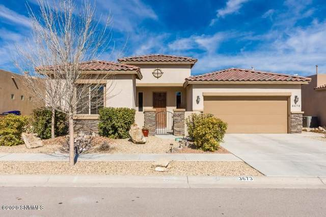 3673 San Clemente Avenue, Las Cruces, NM 88012 (MLS #2000506) :: Steinborn & Associates Real Estate