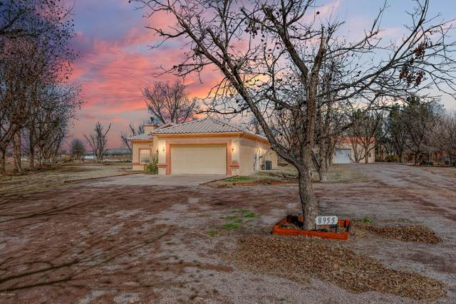 8955 Pecanderosa Court, Mesilla Park, NM 88047 (MLS #2000516) :: Arising Group Real Estate Associates