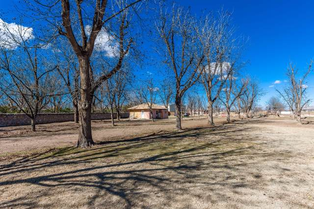 8925 Pecanderosa Court, Mesilla Park, NM 88047 (MLS #2000517) :: Arising Group Real Estate Associates