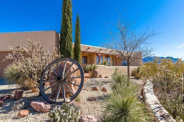 9545 Soledad Canyon Road, Las Cruces, NM 88011 (MLS #2000520) :: Steinborn & Associates Real Estate