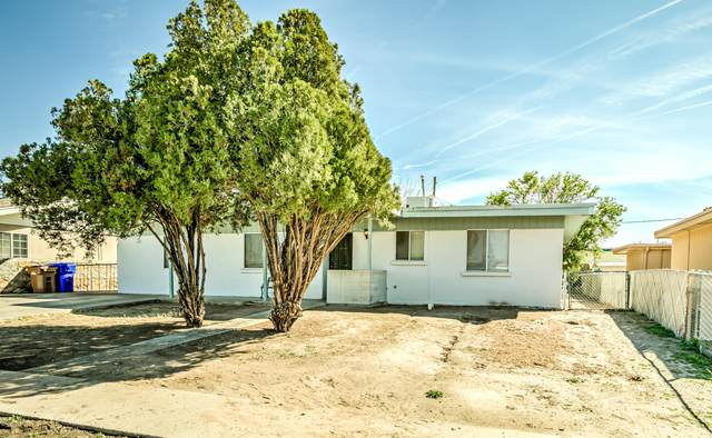 1150 Encino Avenue, Las Cruces, NM 88001 (MLS #2000525) :: Steinborn & Associates Real Estate