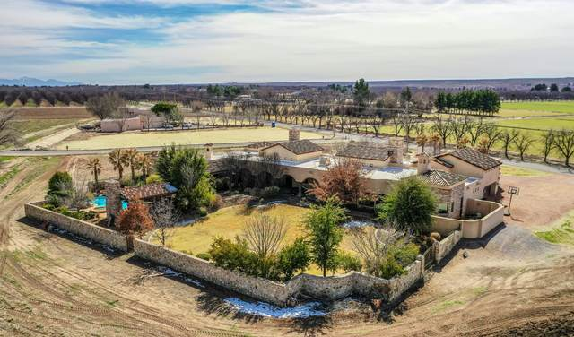 1925 Snow Road, Las Cruces, NM 88005 (MLS #2000545) :: Arising Group Real Estate Associates