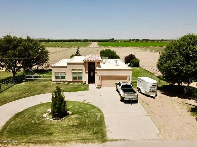761 Palomino Road, Vado, NM 88072 (MLS #2000642) :: Better Homes and Gardens Real Estate - Steinborn & Associates
