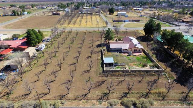 632 W Taylor Road, Las Cruces, NM 88007 (MLS #2000643) :: Better Homes and Gardens Real Estate - Steinborn & Associates