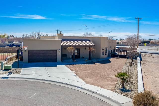 4348 Camino Dos Vidas, Las Cruces, NM 88012 (MLS #2000656) :: Arising Group Real Estate Associates