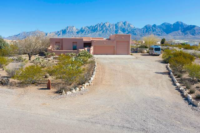 8901 Silk Oak Ct, Las Cruces, NM 88011 (MLS #2000669) :: Better Homes and Gardens Real Estate - Steinborn & Associates