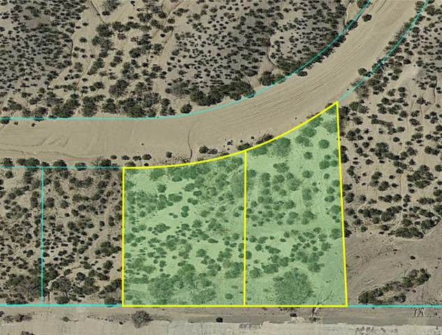 4250 Camino Coyote Lane, Las Cruces, NM 88011 (MLS #2000703) :: Better Homes and Gardens Real Estate - Steinborn & Associates